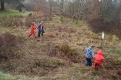 Forest School (1)